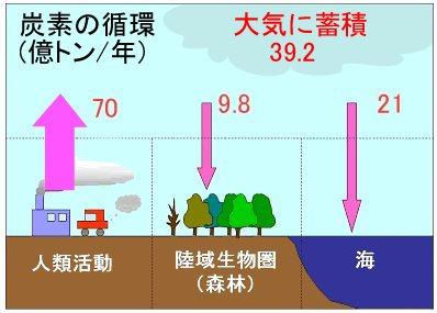 graph-1-03fb3-9defd.jpg